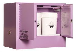 Corrosive Storage Cabinet 100L