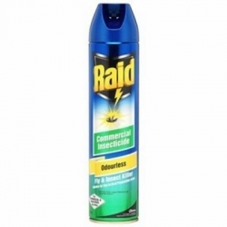 Raid Odourless Insect Spray 400gm