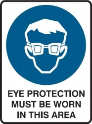 Eye Protection Must Be Worn In This Area 600x450